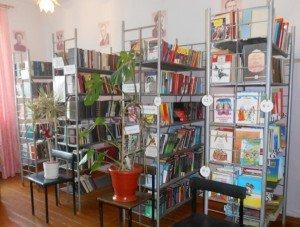 Верхнебоевская сельская библиотека