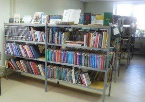Двуреченская сельская библиотека 1 1