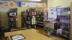 Кашинская сельская библиотека 1