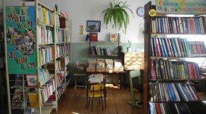 Бородулинская сельская библиотека 3